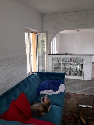 Malerarbeit Wohnraum nachher